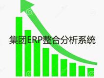 集团ERP整合分析系统